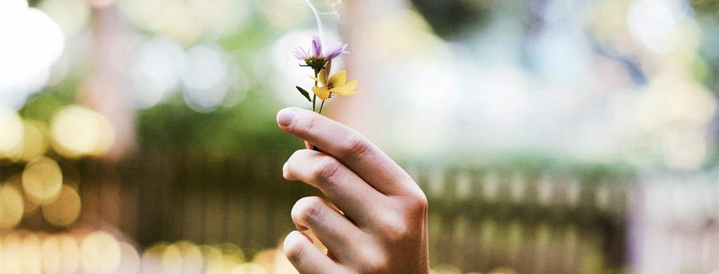 olfactotherapie huiles essentielles maladie alzheimer