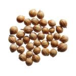 huile-essentielle-coriandre-anti-moustique-AromaCare-diffuseur